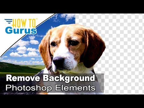 Oshop Elements How To Remove Background Tutorial Change Background In