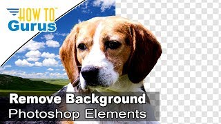 Photoshop Elements How to Remove Background - How to Make a Transparent Background