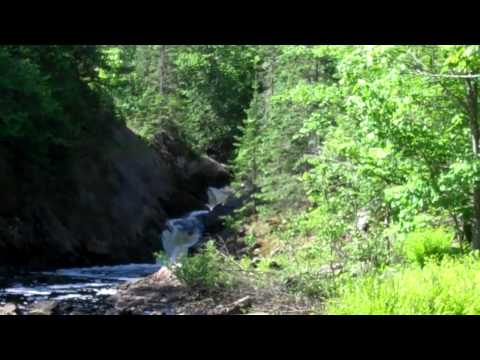 Spring Camp Falls Near Hurley, WI. June 13, 2011.mp4
