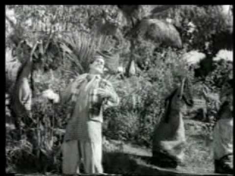 Nakli Nawab (1962)-Phoolon se Rangeen Yeh Zameen Hai (Mukesh)