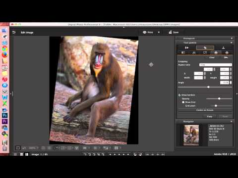 Digital Photo Professional (DPP) 4: Editing Images