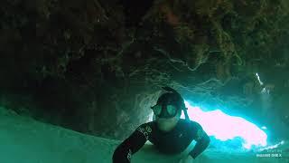 Insta360 ONE X - Diving In Australia