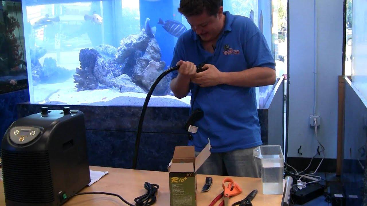 Aquarium Chiller Installation Guide