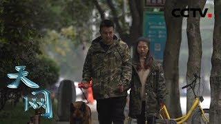 本期节目主要内容: 2011年8月,杨榕恒第一次见到了德牧警犬旺仔,一开...