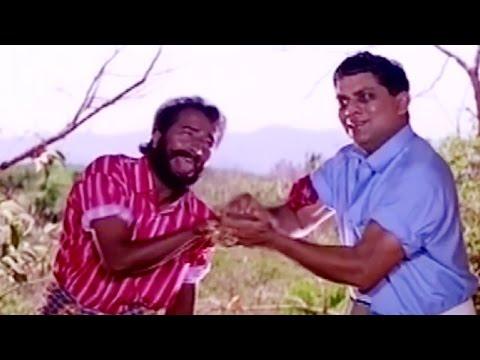 Jagathy & Harisree Ashokan Comedy Scenes | Non Stop Comedy Scene | Hit Comedys | Comedy Movie