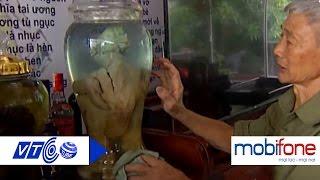 Chiêm ngưỡng bình rượu 'gà Đông Tảo' 65 triệu đồng | VTC