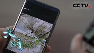 《天网》 照片里的秘密:嫌犯到案拒绝交代罪行 手机里的一张照片却出卖了他 | CCTV社会与法