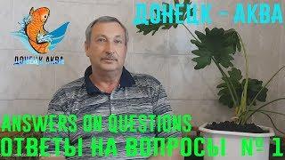 донецк аква, ответы на вопросы 1, все о аквариумных рыбках, советы, как содержать, как отнерестить