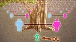 Sind wir alle eng miteinander verwandt und haben die gleichen Vorfahren und Ahnen ?