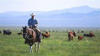 The Last Cowboy at Pine Creek Ranch Video