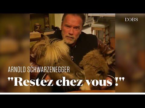 Confiné avec son âne et son poney, Schwarzenegger vous invite à rester chez vous contre le Covid-19