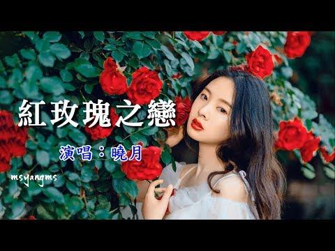 紅玫瑰之戀 曉月(浪漫又好聽)