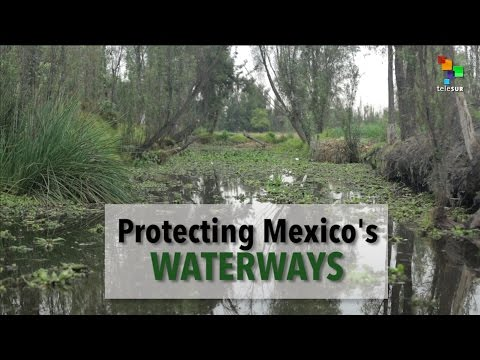 Mexico's Water Crisis