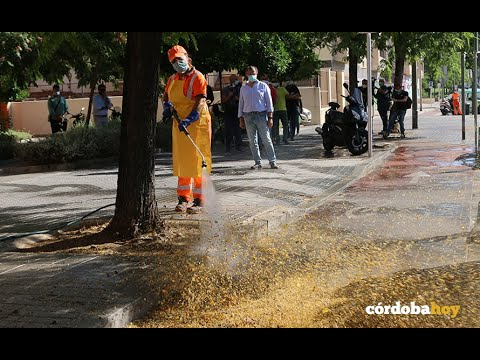 Sadeco presenta sus nuevos vehículos de limpieza y desinfección