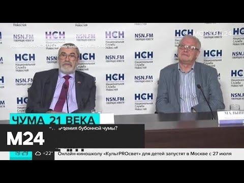 Инфекционисты оценили вероятность вспышки бубонной чумы в России Москва 24
