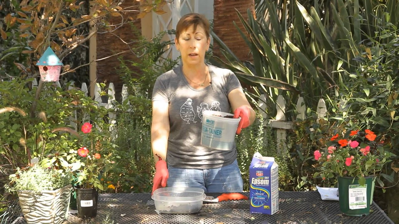How to Add Epsom Salt & Coffee Grounds to Potting Soil : Garden ...