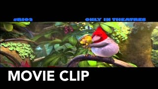 "Rio 2 | ""Valentines Day"" Clip 