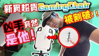 买了超贵Gaming Chair被割破!凶手竟然是他!!!【DailyVlog】