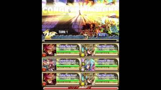 [Brave Frontier] Male FG 2.81mil pts