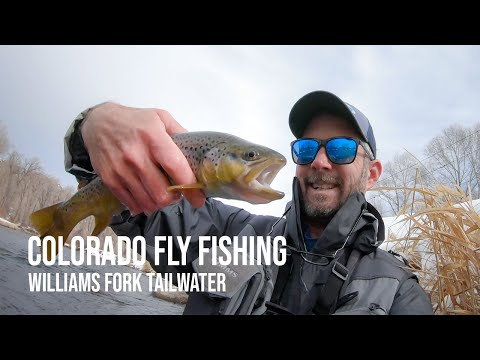 Colorado Winter Fly Fishing On The Williams Fork Tailwater
