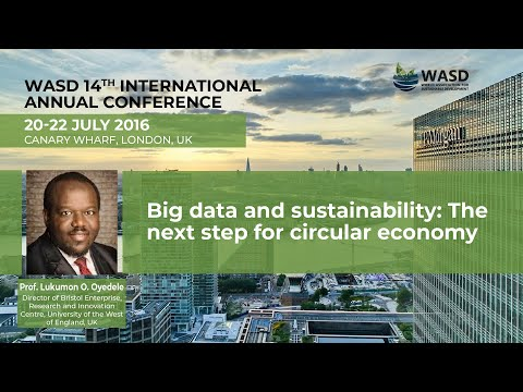 Big data and sustainability: The next step for circular economy