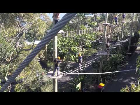 Thrill Wild Ropes Sydney Taronga Zoo for team building activities, corporate events and family fun!