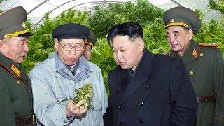20 Hechos Impactantes Sobre Corea del Norte
