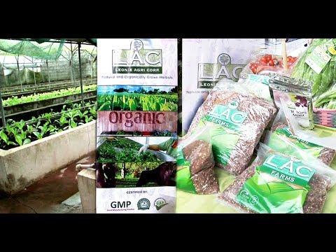 Leoni Agri Corp Farm, itinataguyod ang organic farming at medicinal herbs
