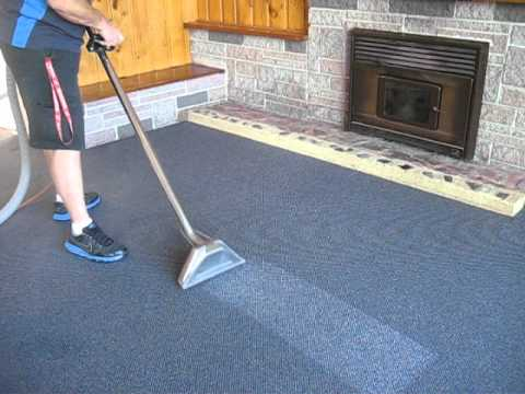 carpet and upholstery steam cleaned by nz cleaning services Auckland.