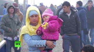 Власти стран ЕС ищут способы борьбы с ранними браками между беженцами