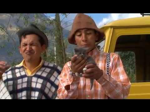VIDEOS CHISTOSOS Y GRACIOSOS // VIDEOS DIVERTIDOS