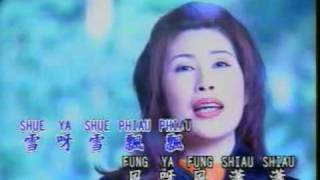 林淑娟 (Bessie Lin) - 风雪情未了