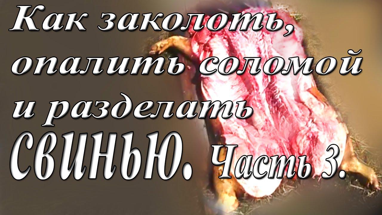 """Новая группа офицеров российского ГРУ прибыла на Донбасс из-за провалов разведки """"ДНР"""", - ИС - Цензор.НЕТ 8894"""