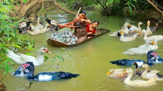 Women Hunting duck egg At river for Dog -  Cooking Soup duck And egg for baby dog Eating delicious
