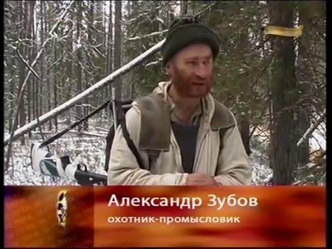 Фильм про охотника