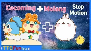 Learn Colors with Egg Angel Cocoming, Molang & Learn Stop Motion Animation(에그엔젤 코코밍과 몰랑 스톱모션)