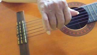 Tình Khúc Chiều Mưa (Nguyễn Ánh 9) - Guitar Solo