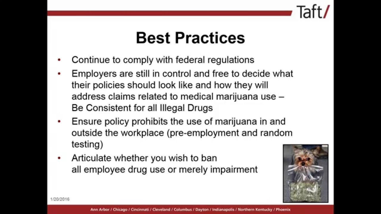 Employment Drug Testing: Up In Smoke! What's an Employer to do with the  Changing Marijuana Landscape