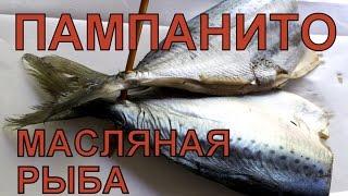 Масляная рыба. Пампанито.(Купили масляную рыбу, сорт Пампанито. Выяснилось, что её не рекомендуется есть людям у которых проблемы..., 2015-05-07T10:11:28.000Z)