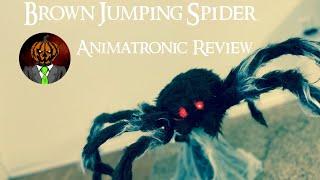 Brown Jumping Spider Animatronic Review - Spirit Halloween Prop