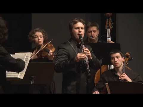 Sebastian Manz: C. M. von Weber, Quintet for Clarinet and Strings, Op. 34 - II. Fantasia