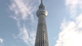 The Earthquake-proof Tower In Japan - Secret Revealed