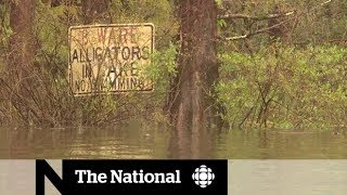 Florence death toll rises as floodwaters surge in Carolinas