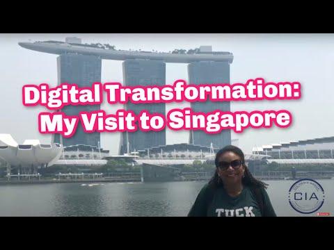 digital-transformation:-my-visit-to-singapore-||-singapore's-nestia-umbrella-sharing-service