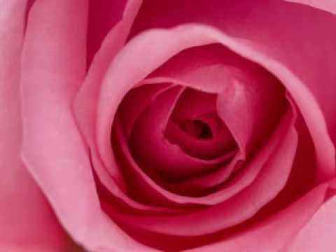 Cinta - Camelia Malik