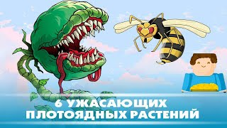 6 ужасающих плотоядных растений [Plushkin]