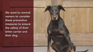 Dog Bite Prevention and Awareness Tips