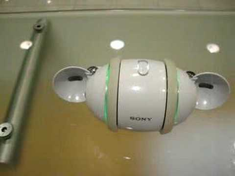 Sony Rolly dancing Shakira
