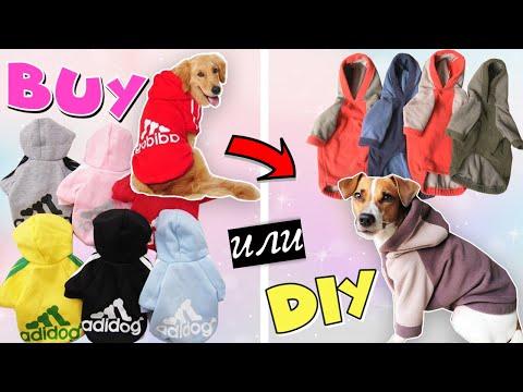 Выкройки одежды для собак мелких пород своими руками