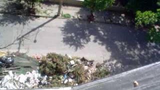Lixo em Triagem, Rio de Janeiro. Data: 28/01/10.